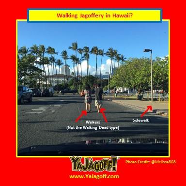 YJ-Walkers_Hawaii