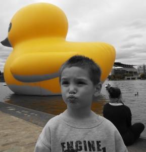 Duck004DuckFace
