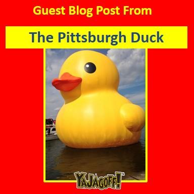 YJ-GuestBlogPost_Duck