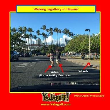 YJ-Walkers_Hawaii