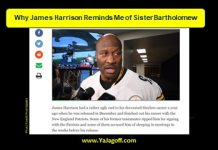 James Harrison, Steelers