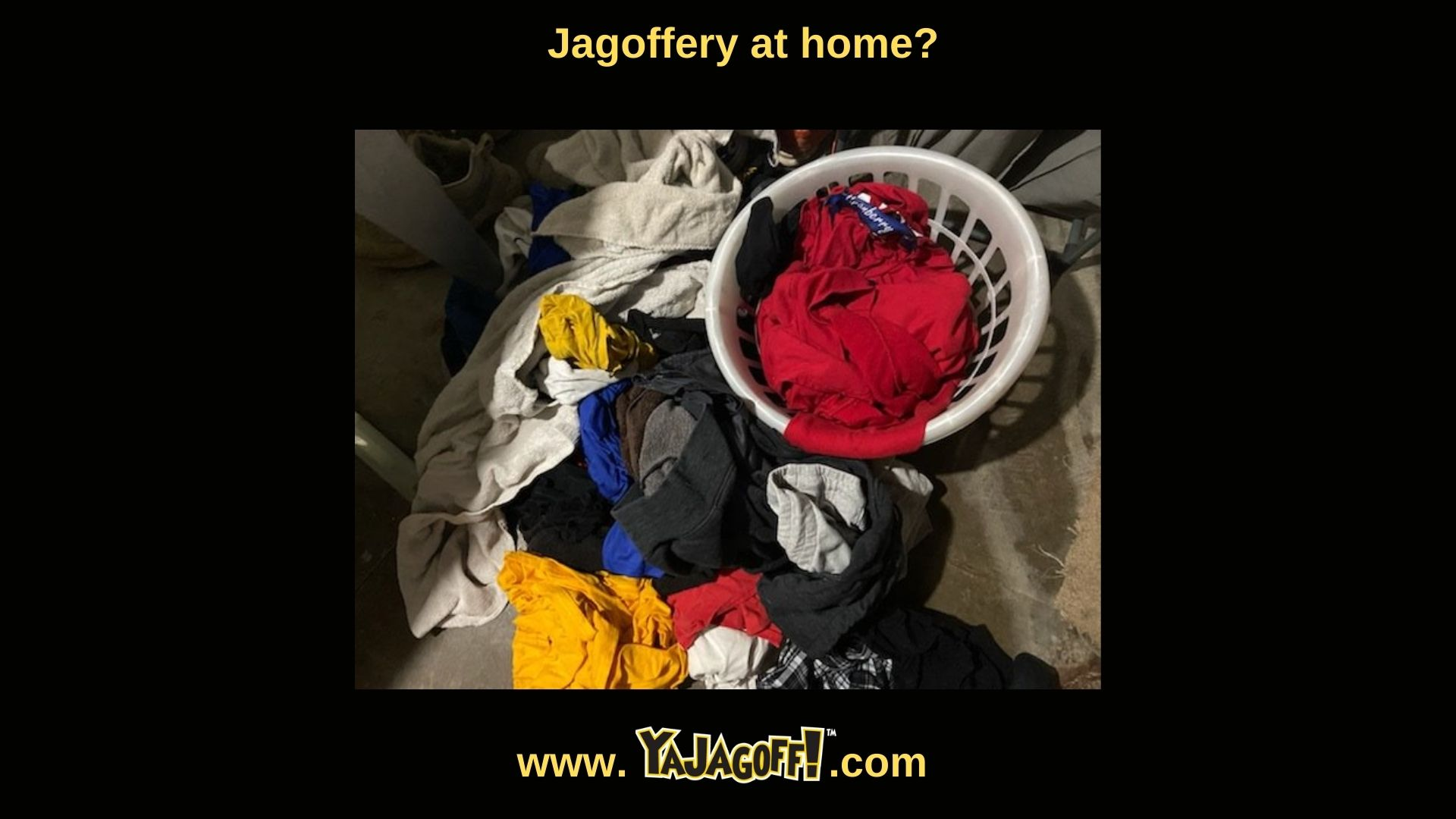 Renne Rules Laundry jagoffs