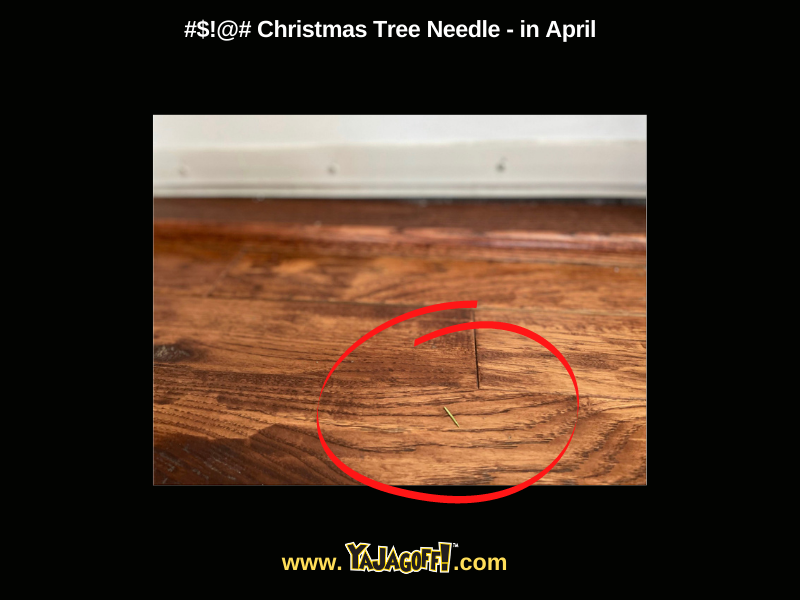 YaJagoff Blog Pine needles jagoffs